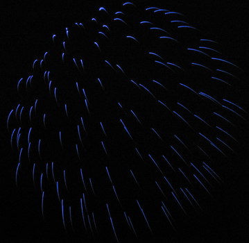 Firework in Blue IMG 0832 by TheStockWarehouse