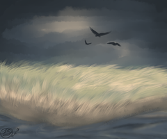 Sweeping Storm by simplytresca