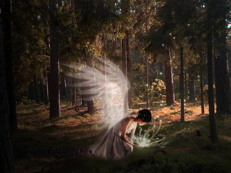 Angel in forest by finieramos