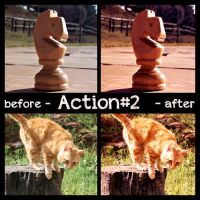 Action-2 by thelastrunaway