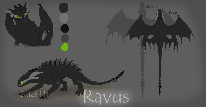 Ravus Ref. Sheet by MizaT11