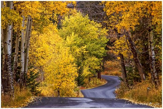 Down the Road of Autumn by kkart