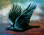Flying Crow by Ludifico