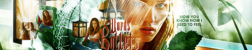 Words Like Bullets Banner by Ash. by 1Dhazboo