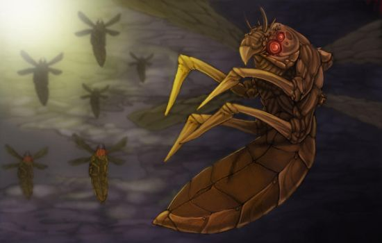 Locusts by theconti