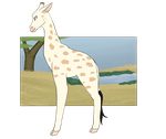 Botanica Zoo || Rothschild's Giraffe || Bonnie by LadyPipen