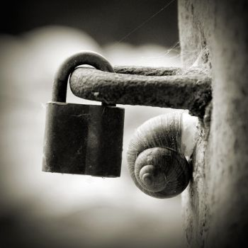 double lock by anjelicek
