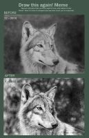 Draw it again meme with wolves by BeckyKidus