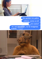 Alf chat by DrPingas