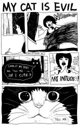 My cat is evil by Nicca11y