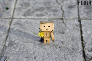 for you - danbo by FotoRuina