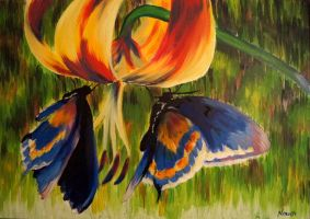 Mariposas by NoraMarquez