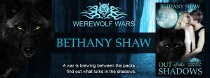 Out of the Shadows Facebook Cover by pams00