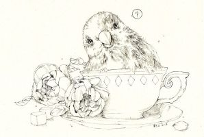 Parrot in the cup by Zaozi-Nanaly