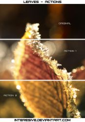 Leaves - Actions by interesive