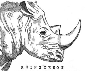 Rhinoceros by ElfceltRJL