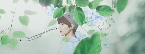 Roy - Wang-TFBOYS by anhle630
