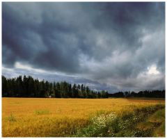 BG Storm Is Coming by Eirian-stock