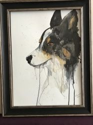 Watercolour Border Collie by velvetlace-x