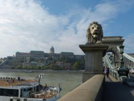 Buda Castle from the Chain Bridge by setanta5