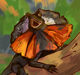 140710 Frilled lizard by PataYoh