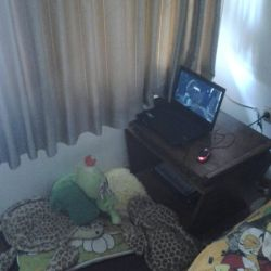 Nutty's PC Gaming session by masonicon