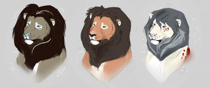 Lions by nealee-q