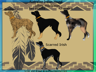 Australian Indian Hound other Markings sheet by IcyMountainKennels