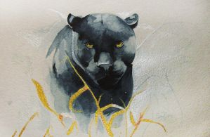 Black Jaguar by SalamanDra-S