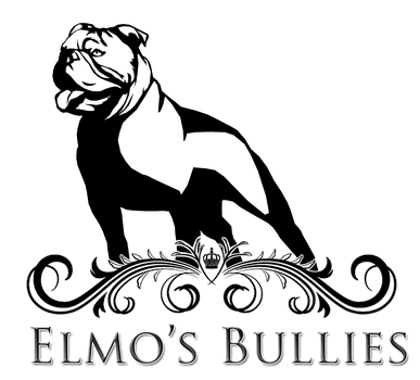Elmo's Bullies Logo by premiumbulldogs