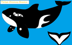 Teresa Orcinus Shamu Official Reference by Dolphingurl21stuff