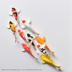 Paper Koi by Richi89