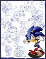 Sketches-Sonic the Hedgehog by herms85