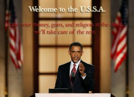 Welcome to the U.S.S.A. by hopelesslyabandoned