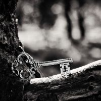 The Key by Peterix