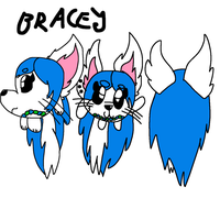 Bracey Ref by GameyGemi