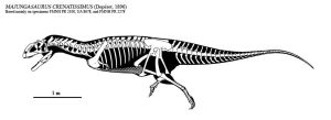 Majungasaurus skeletal by Dinomaniac