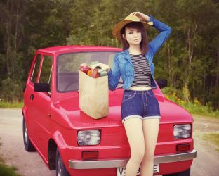 Need company for picnic in vintage style by pnn32