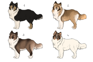 Adopts: Rough Collies [CLOSED] by NightyART