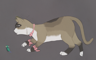 A cat (in color) by gamerd