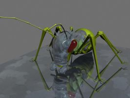 King cricket 2 by Sphinx1