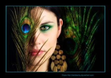 :Peacock: by black-life