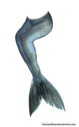 Mermaid Tail 05 by DeviantRoze