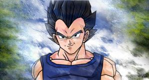 Vegeta by polishdude20