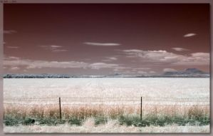 Mullaley Region Field by JohnK222