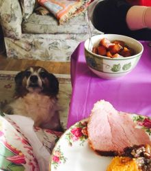 Give Me Ham, Please by Cosmic--Chaos