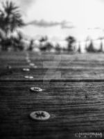 Screws and Wood (B/W) by Ragnarokkr79