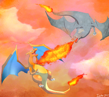 Charizards by ieaka