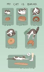 Cat Bread by Zombiesmile