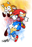 Classic Team Sonic by RadionicSIK832
